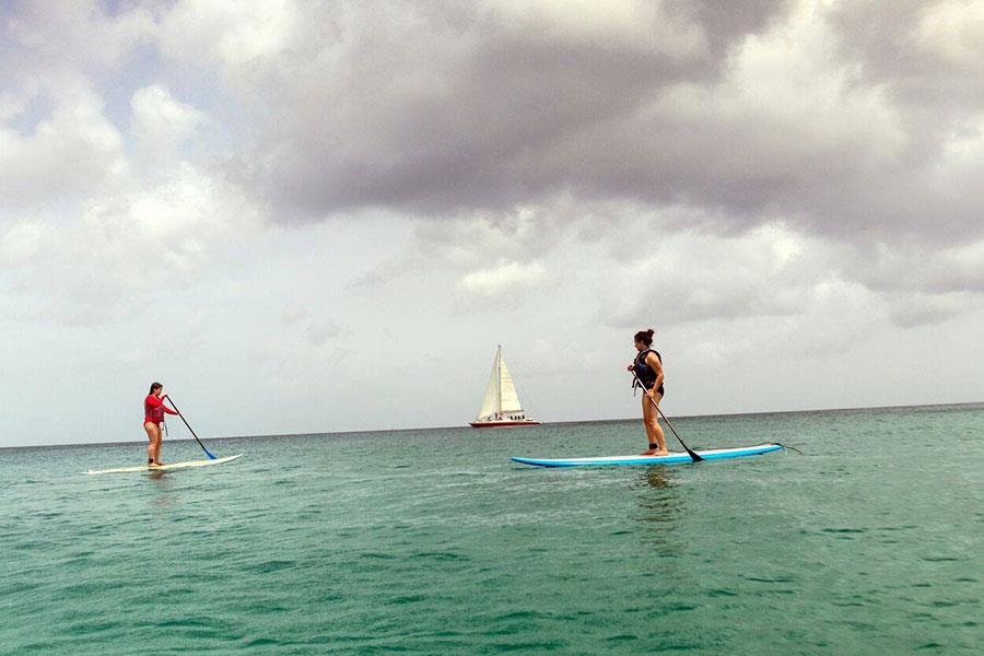 Stand-up paddle boarding in Barbados ()
