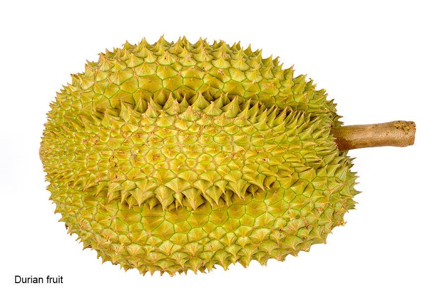 Durian fruit (Thinkstock)
