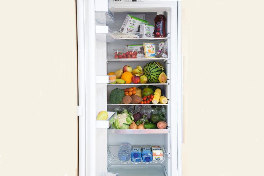 Tim Shieff fridge (Tim Shieff)