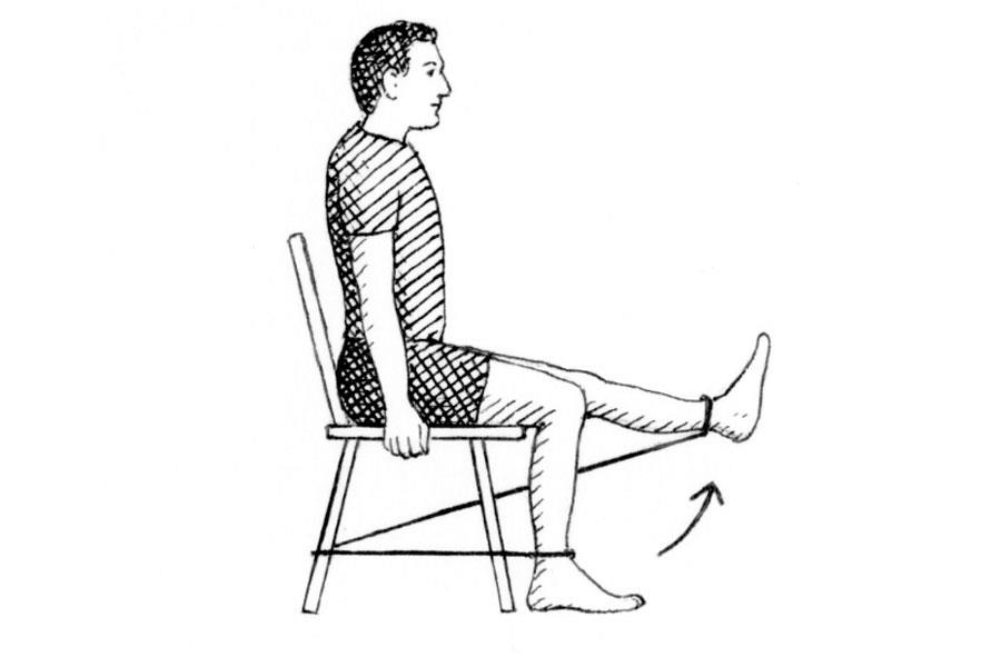 Sitting knee extension exercise ()