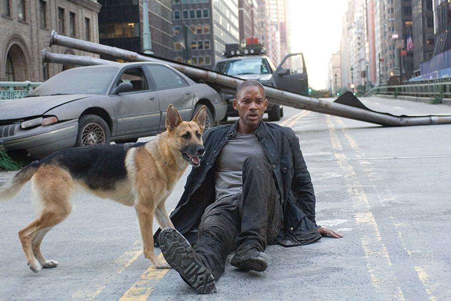 I am legend ()