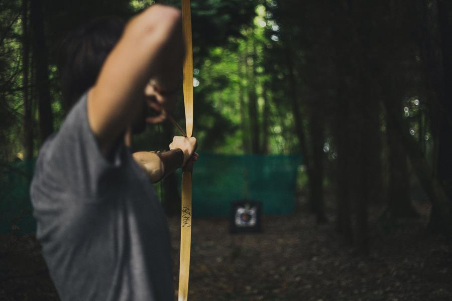 Archery Wildfire Festival ()