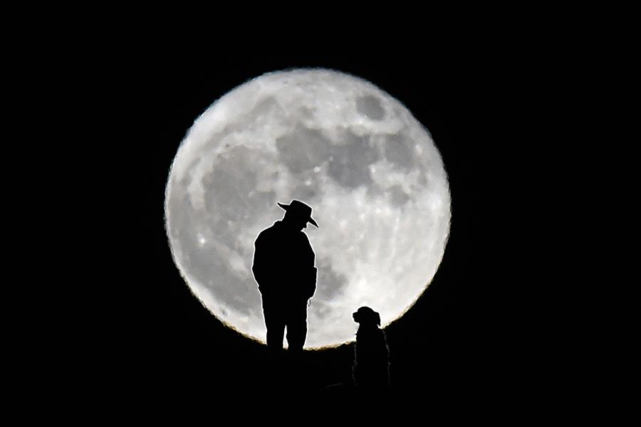 Man with cowboy hat and dog moon silhouette ()