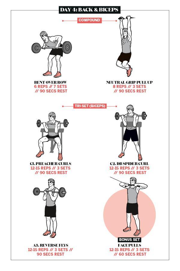 Shaun Stafford back and biceps workout plan ()
