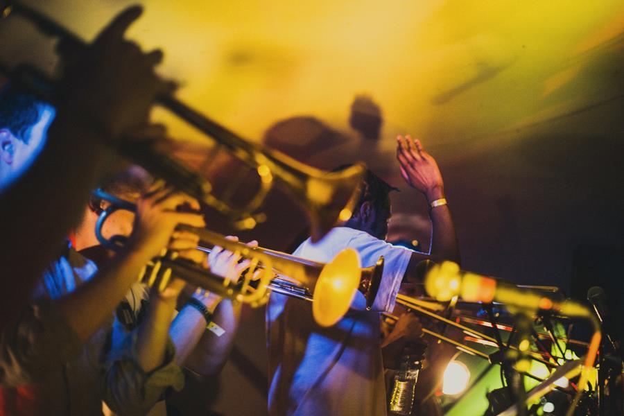 Music Wildfire Festival  ()