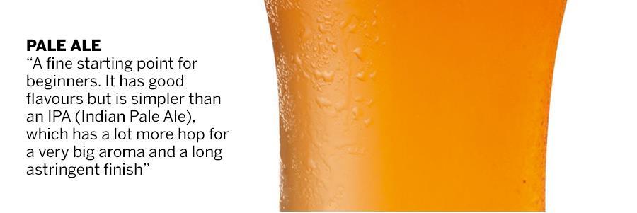 Pale ale (123 rf)