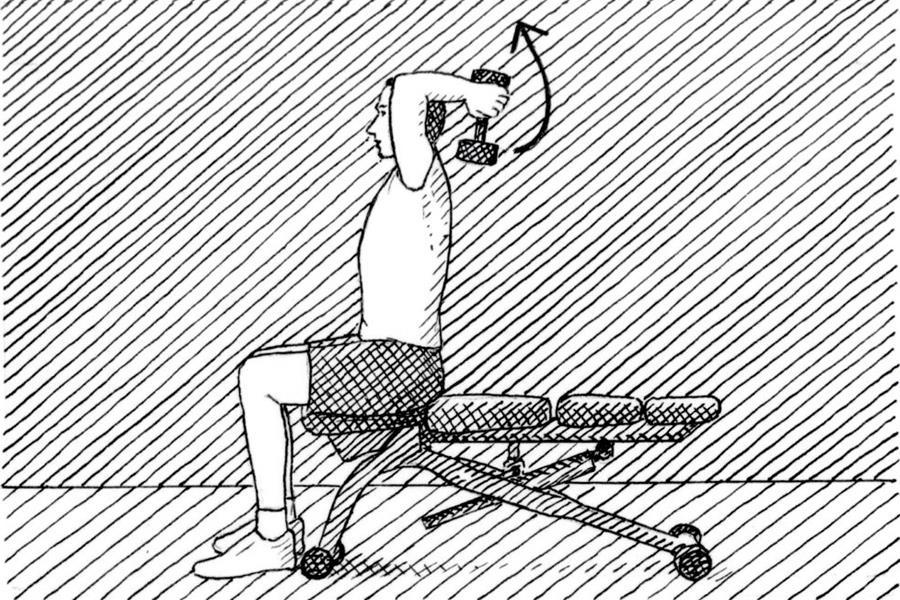 Seated tricep press technique diagram (Nick Hardcastle)