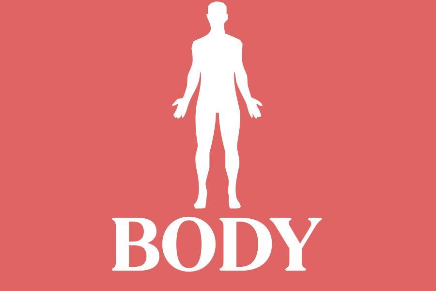 Body illustration ()