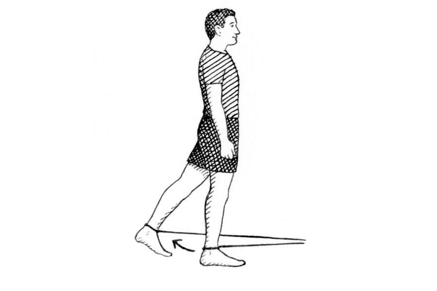 Hip extension exercise ()