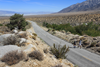 Badwater 135 running in the desert (Getty)